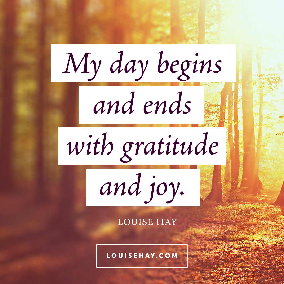Inspirational Quotes About Happiness: Daily Affirmations & Beautiful Quotes From Louise Hay